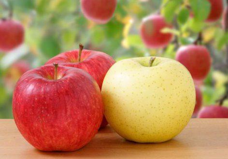 各種りんご
