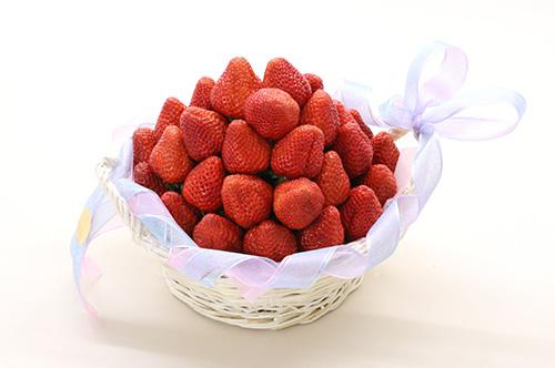 odawara_strawberry_a(copy)